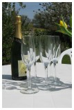 Glasses of champagne in the garden